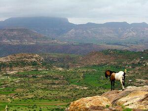 Ethopian Highlands