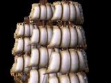 SS Vancouver (Barque)