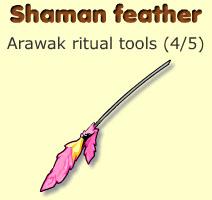 Shaman feather