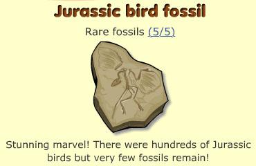 Jurassic bird fossil