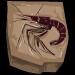 Jurassic shrimp fossil