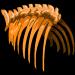 T. rex ribcage