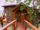 Backyard Bungalow