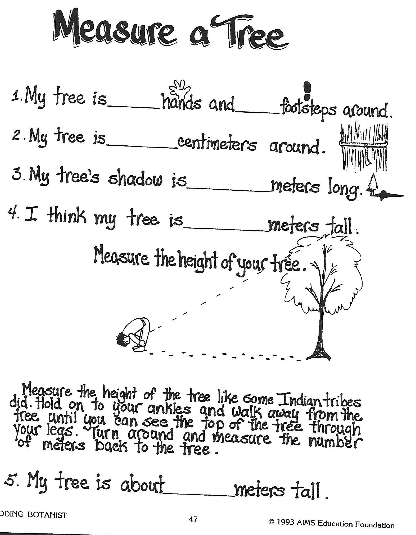 Image Measure A Tree Worksheetg Trees Of Texas Wikia Fandom
