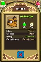 Bandicoon Almanac