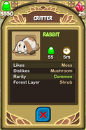 Rabbit Almanac