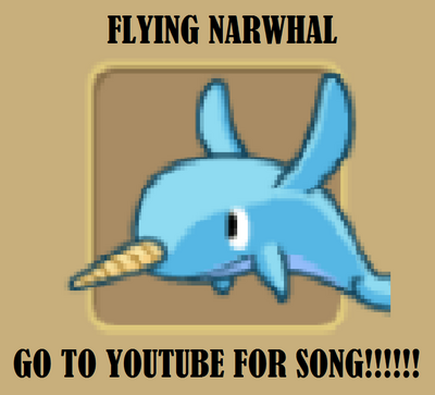 FLYING NARWHAL OMGGGGGGGGGG