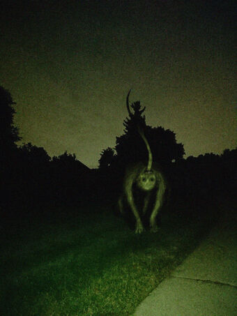 Night Dog Trevor Henderson Inspiration Wiki Fandom