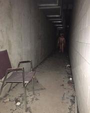 Screenshot 2020-04-14 Trevor Henderson ( trevorhenderson) • Instagram photos and videos