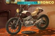 +1.3.3 BRONCO bronze