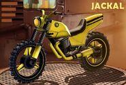 YellowJackal