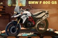 StandardBMWF800GS