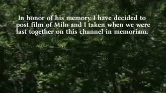 Introduction - In Memory of Milo Asher-0