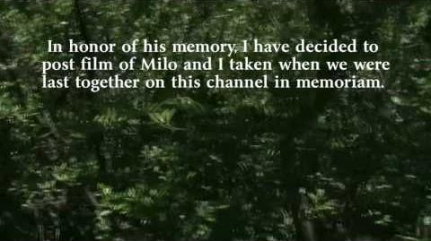 Introduction - In Memory of Milo Asher