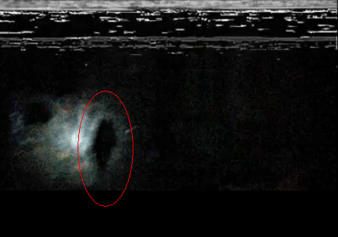 File:Possible sighting.PNG