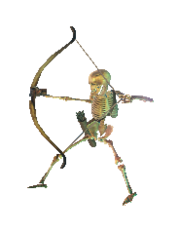 Archer Skeleton