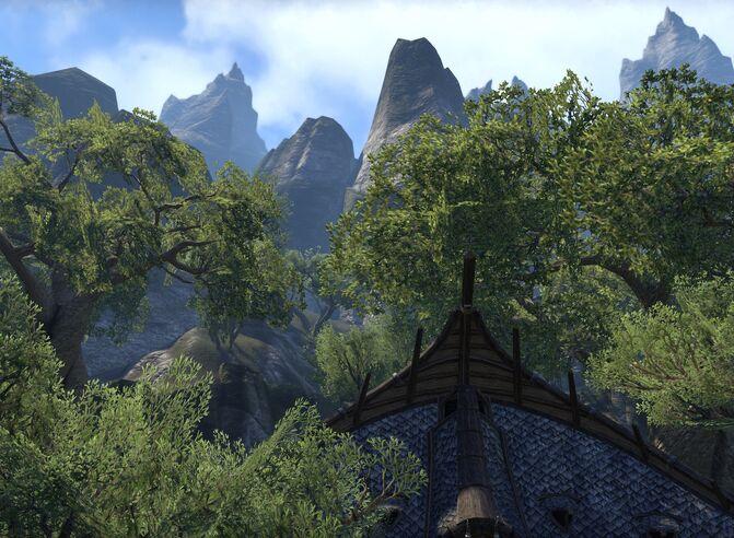 Bosquet montagnes
