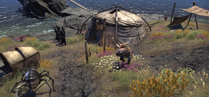 Camp cendrais