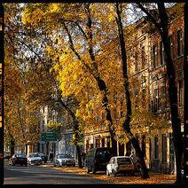 Autumninthecity