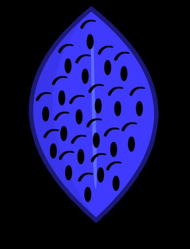 Troc wiki