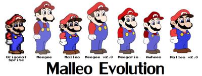 830px-Evolutionofmalleo