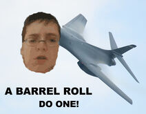 Dog264 Barrel roll
