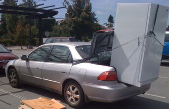 Fridge in trunk