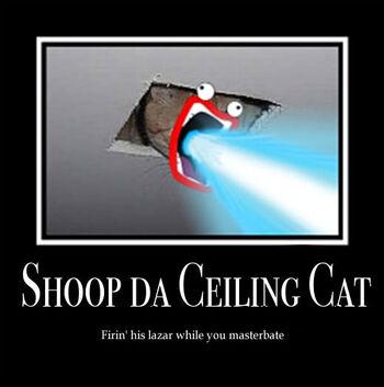Shoop da Ceiling Cat by Little Lovely
