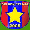 SGS2008