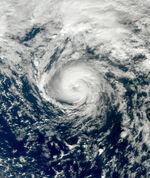 Tropical Storm Grace 2009 at peak intensity.jpg
