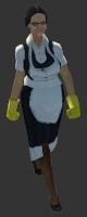 T3-Maid