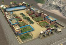 T3-Zoo