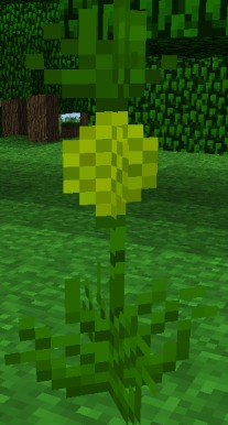 Pineapple | Tropicraft Wiki | FANDOM powered by Wikia
