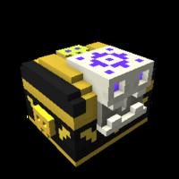 Skelly's Treasure Box