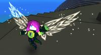 Wings Gossamer Gliders