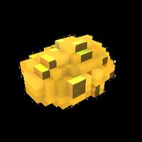Unusual Meteorite Fragment