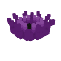 Witchly Anemone