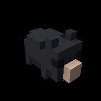 Plucky Piggy