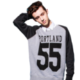 Troye transparent4