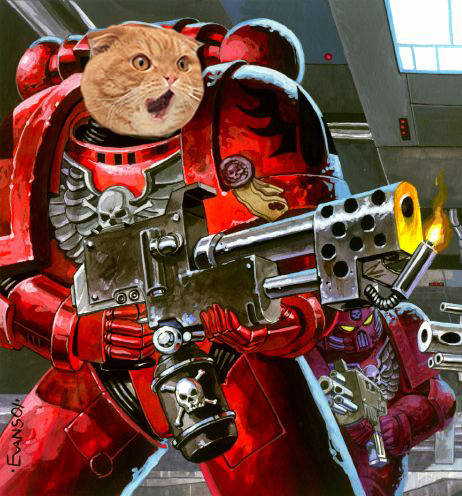 Catmarine2