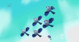 Loty Wielką Błękitną Sójką