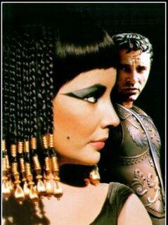 Cleopatra taylor