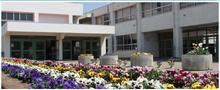 Azuma Elementary walkway