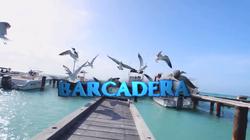 Barcadera Gallery