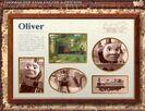 Oliversfactscard
