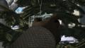 Thumbnail for version as of 14:01, November 8, 2014