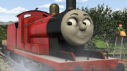 ThomasAndThePigs37