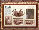 Duckspromocard