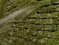 Thumbnail for version as of 18:52, May 14, 2015