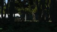 TreeTrouble3